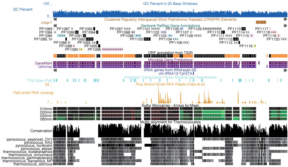 Archaeal Genome Browser